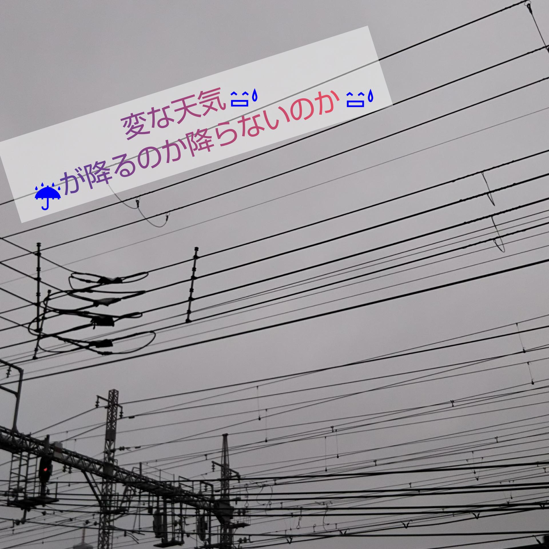 右京 区 天気